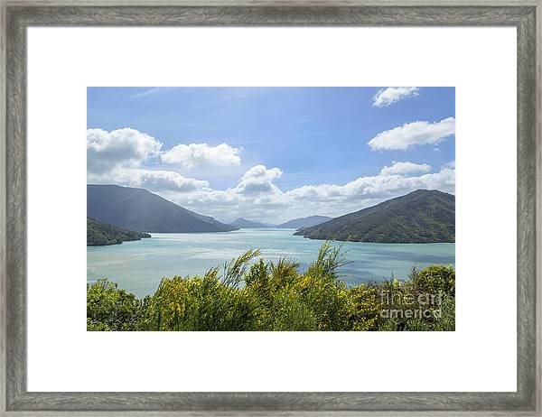 Queen Charlotte Sound, New Zealand Framed Print by Julia Hiebaum