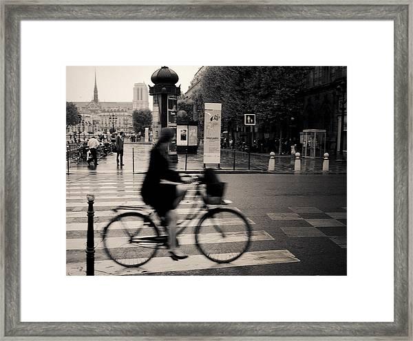 Quick Glimpse Framed Print
