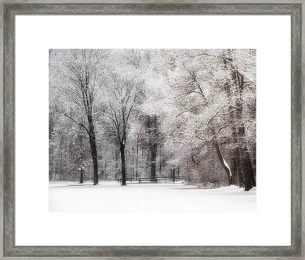 Quiet Winter  Framed Print
