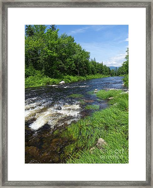Quill Pond Brook Near Rangeley Maine  -70748 Framed Print