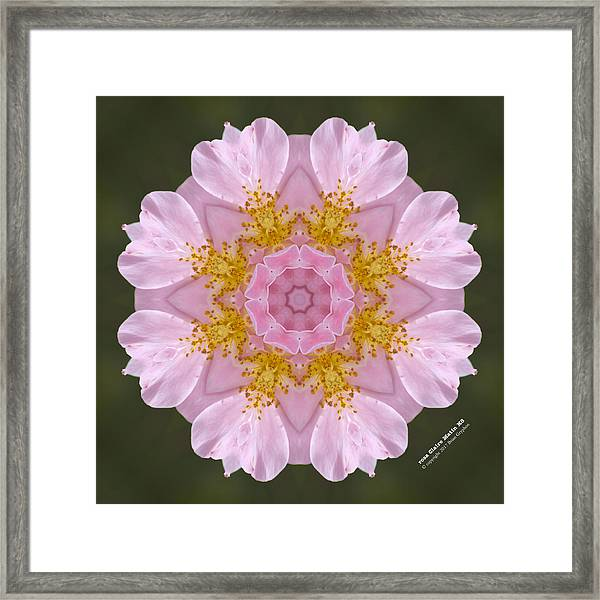 Framed Print featuring the digital art r. 'Claire Matin' 72164k8 by Brian Gryphon