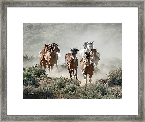 Racing To The Water Hole Framed Print