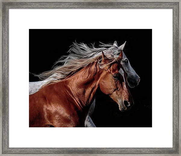 Racing With The Wind Framed Print