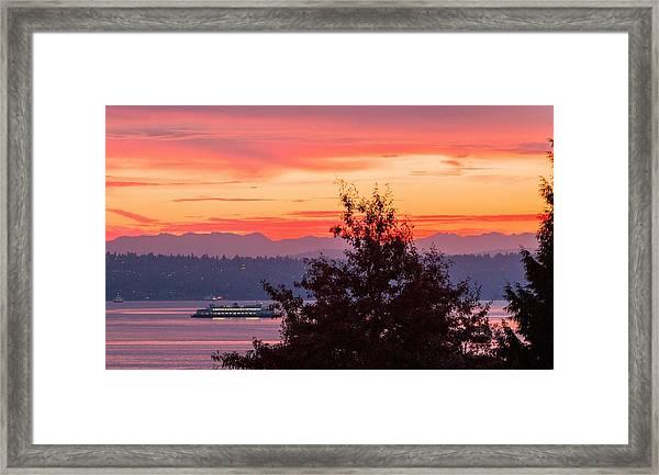 Radiance At Sunrise Framed Print