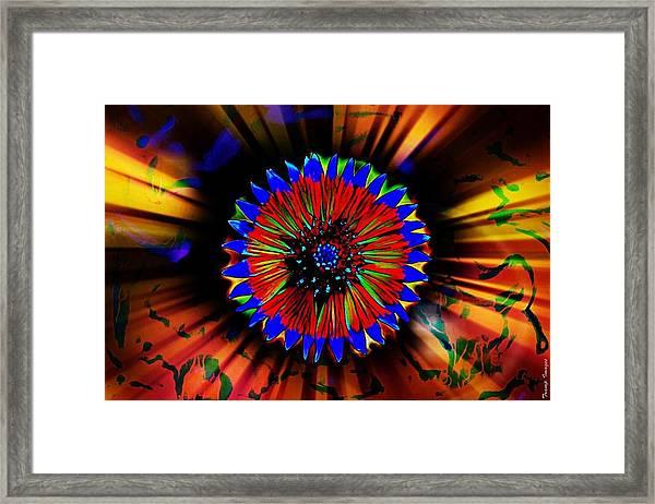 Radiate  Framed Print