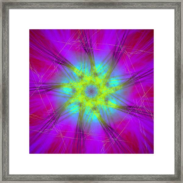 Radicanism Framed Print