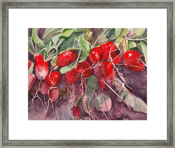 Radishes Framed Print
