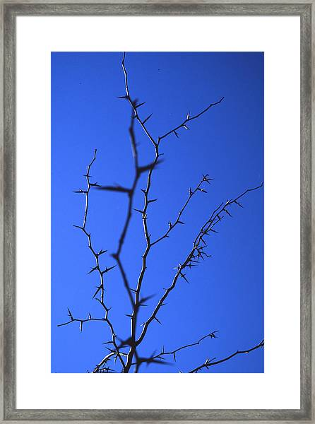 Ragged Edges Framed Print