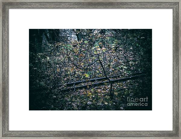 Rail Framed Print