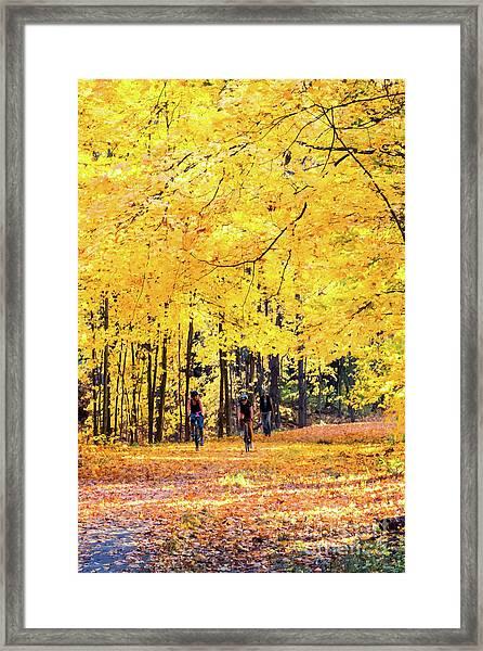 Autumn Glory On The Rail Trail Framed Print