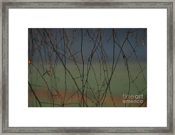 Rain Framed Print by Marta Grabska