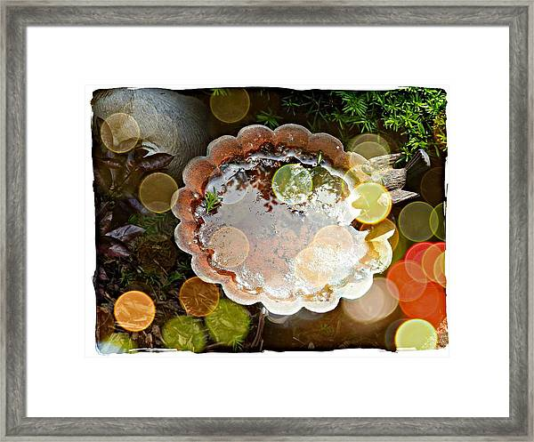 Rainbow Birdbath Framed Print