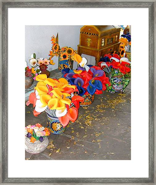Framed Print featuring the photograph Rainbow Man Colorful Flowers And Chest by Joseph R Luciano