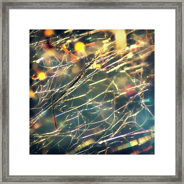 Rainbow Network Framed Print