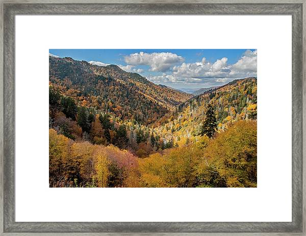 Rainbow Of Colors Framed Print