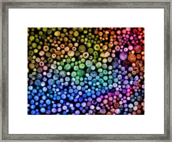 Rainbow Wood Framed Print