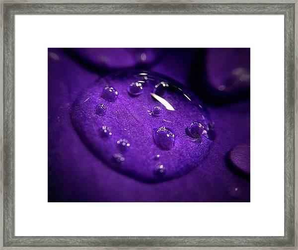 Raindrop, Prn Framed Print