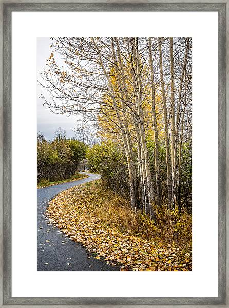Rainy Autumn Walk Framed Print