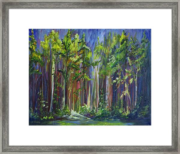 Rainy Day At Nutimik Lake Framed Print