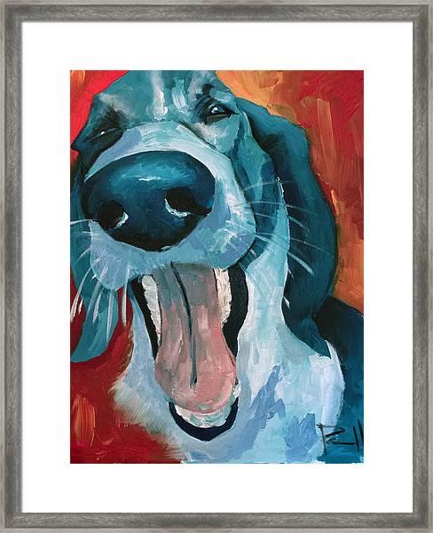 Ralph Framed Print