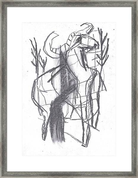 Ram In A Forest Framed Print