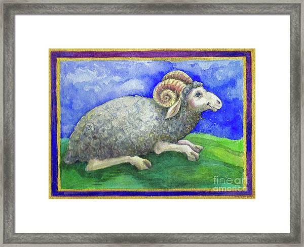 Ram Framed Print