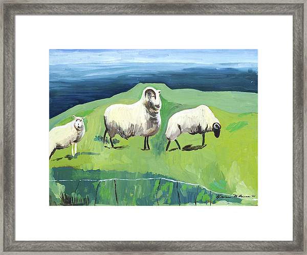 Ram On A Hill Framed Print