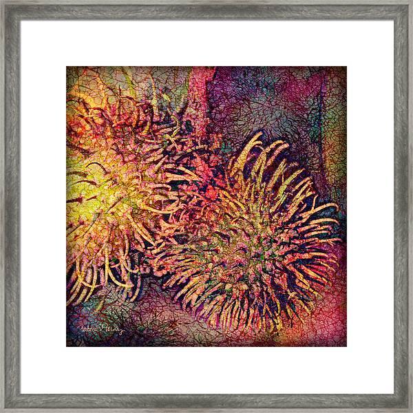 Rambutan Framed Print