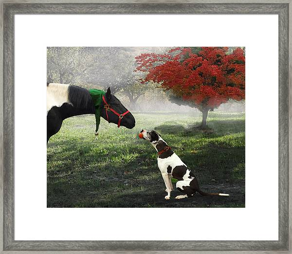 Framed Print featuring the photograph Ranch Pals by Melinda Hughes-Berland