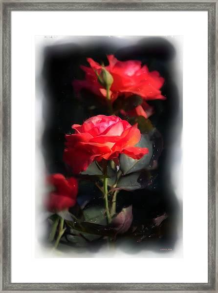 r.'Artistry' 3035g Framed Print