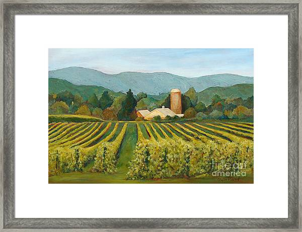 Raspberry Rows Framed Print