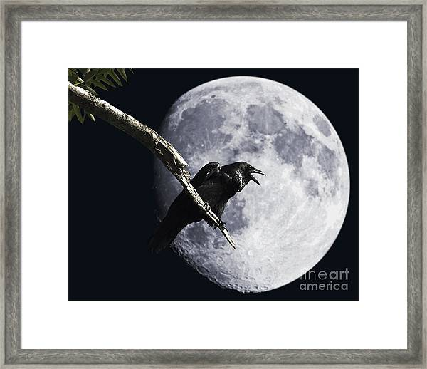 Raven Barking At The Moon Framed Print