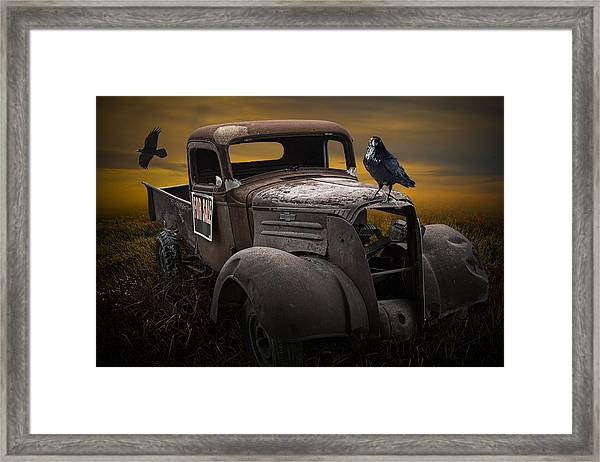 Raven Hood Ornament On Old Vintage Chevy Pickup Truck Framed Print