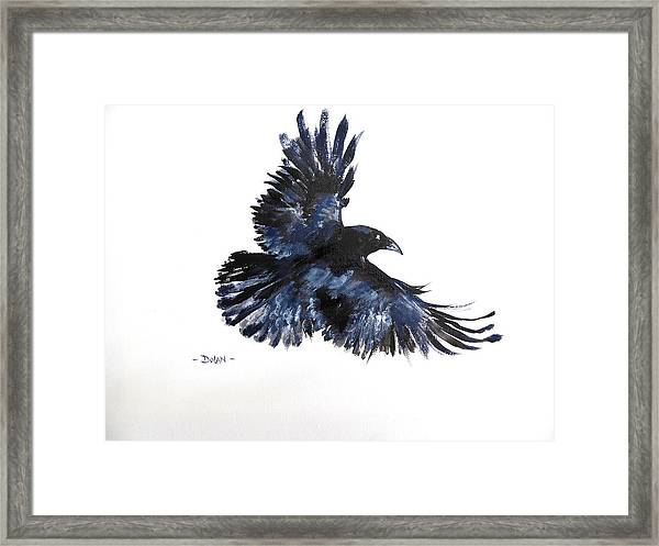 Raven In Flight Framed Print
