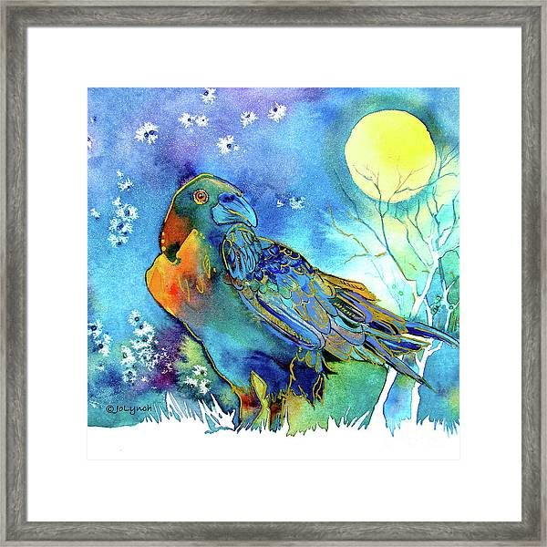 Raven Night Spirit Framed Print