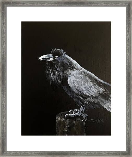 Raven On Post Framed Print