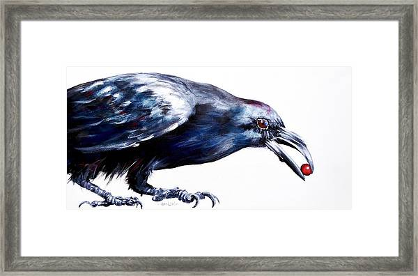 Raven With Berry Framed Print