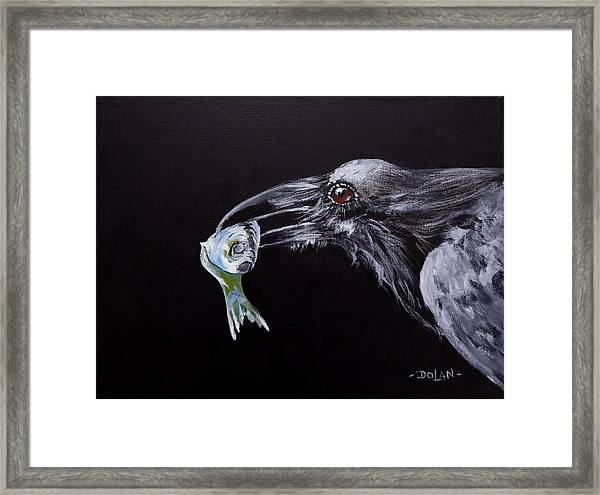 Raven With Fish Framed Print