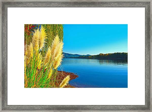 Ravenna Grass Smith Mountain Lake Framed Print