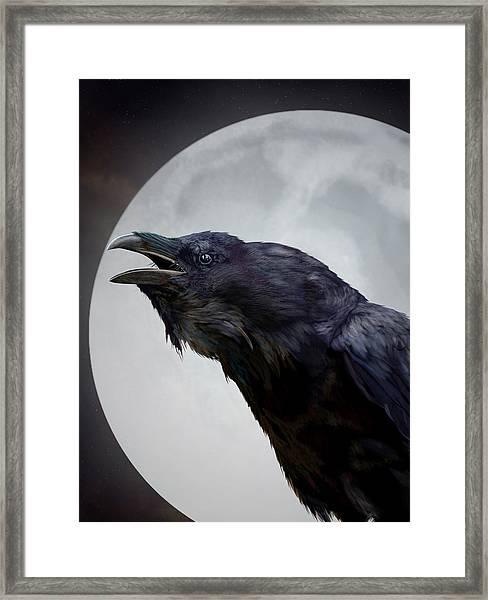 Ravensong Framed Print