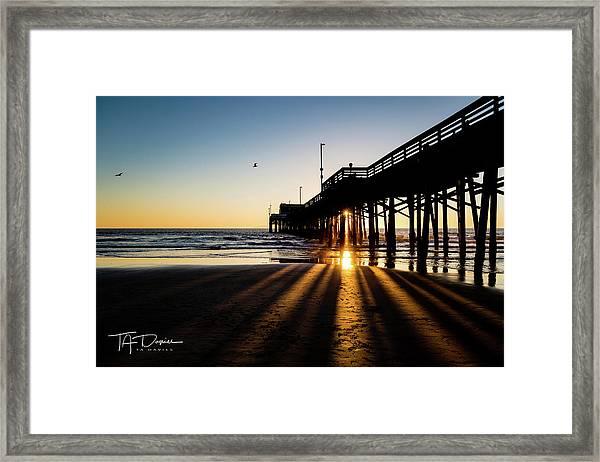 Rays Of Evening Framed Print