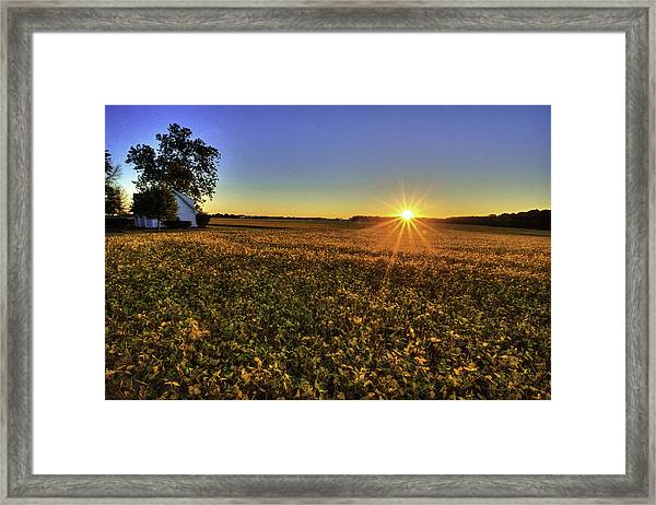 Rays Over The Field Framed Print