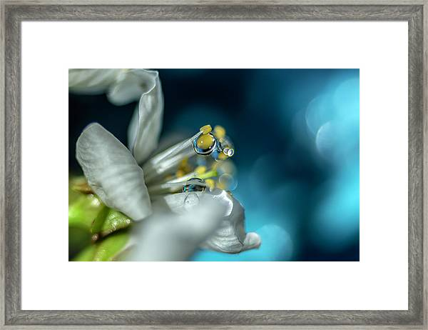 Reaching Into The Blue Framed Print