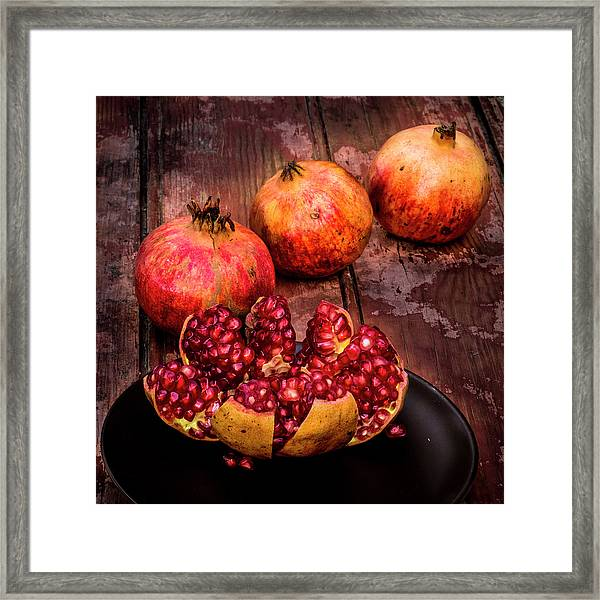 Ready To Eat Framed Print