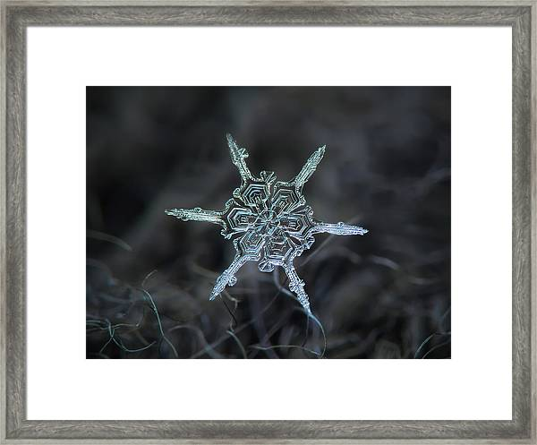 Real Snowflake Photo - The Shard Framed Print
