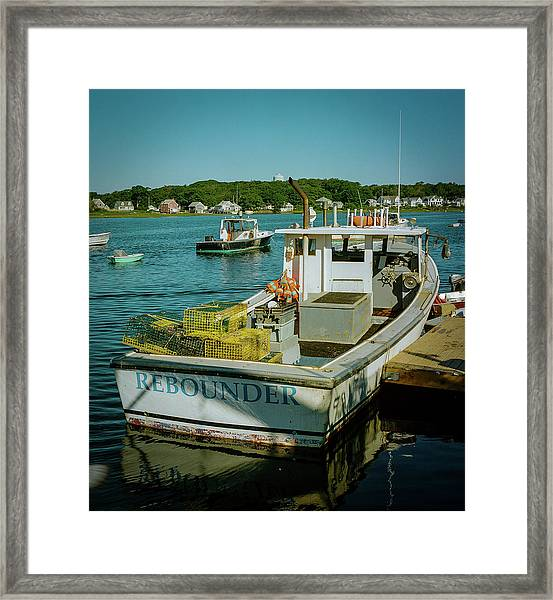Framed Print featuring the photograph Rebounder by Samuel M Purvis III