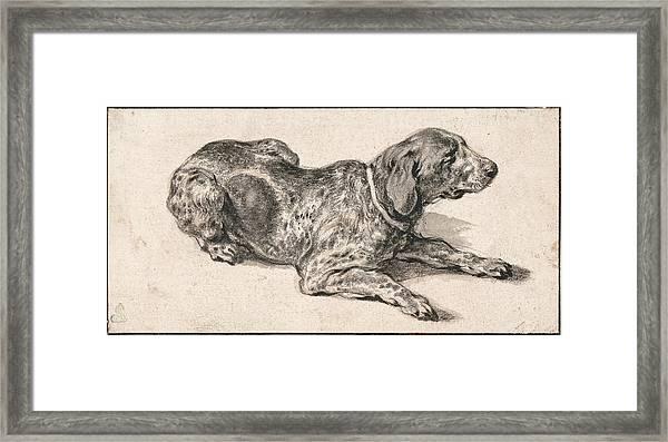 Reclining Dog Framed Print