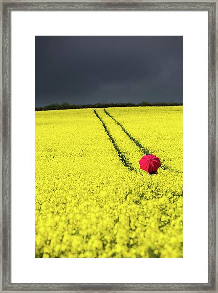 Red And Yellow And....... Framed Print