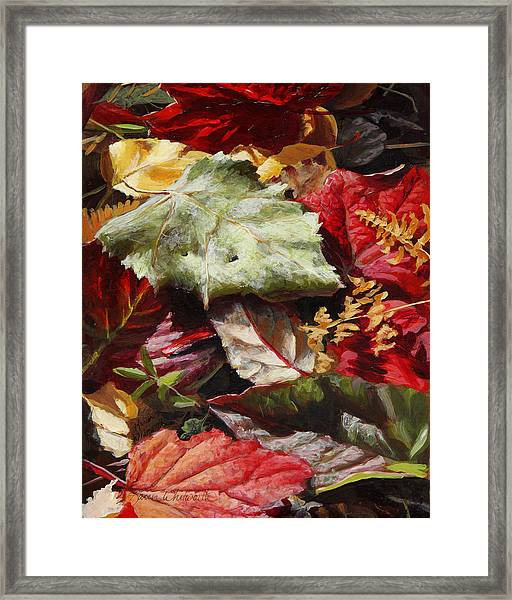 Red Autumn - Wasilla Leaves Framed Print
