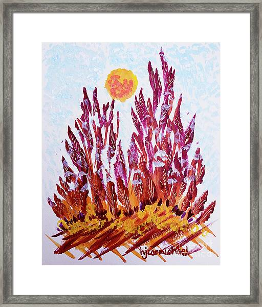 Red Beauties In The Garden Framed Print
